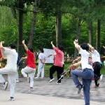 El ejercicio ideal Tai Chi Chuan. Ejercicio y salud en casa. Tao Koo.