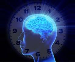 relojes biologicos