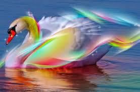 Los colores pueden mejorar tu vida.