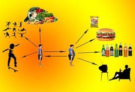 Son varios los factores para tener la alimentación ideal