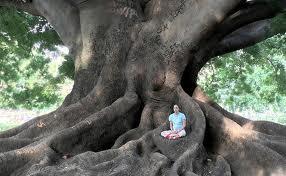 Se puede meditar en cualquier lugar y circunstancia.