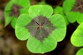 La suerte depende de los factores positivos que vayas acumulando.
