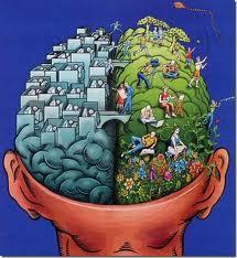 Los hemisferios tienen diferentes funciones.